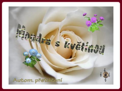 moudra_s_kvetinou_-_helena