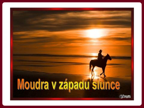 moudra_v_zapadu_slunce