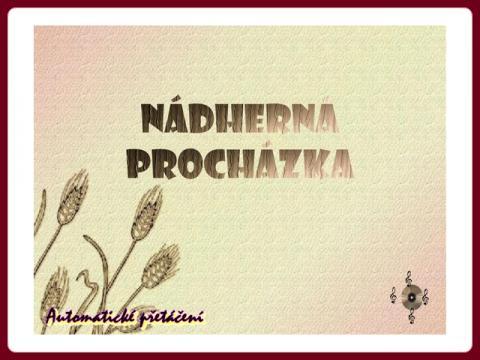 nadherna_prochazka_helena