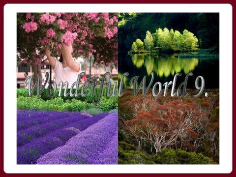 nadherny_svet_-_wonderful_world_-_ildy_9