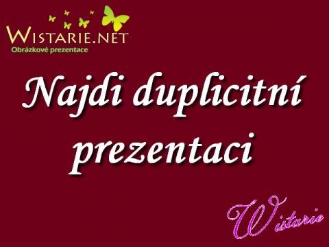 najdi_duplicitni_prezentaci_wistarie