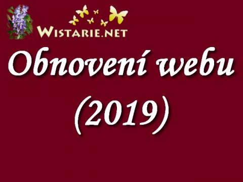 obnoveni_webu_2019