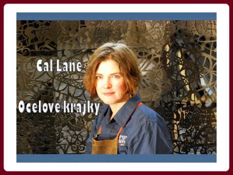 ocelove_krajky_-_works_of_cal_lane