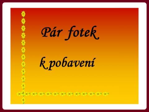 par_fotek_k_pobaveni_-_armstrong