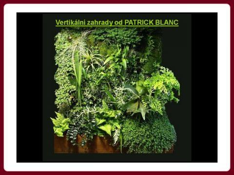 patrick_blanc_-_vertikalni_zahradky