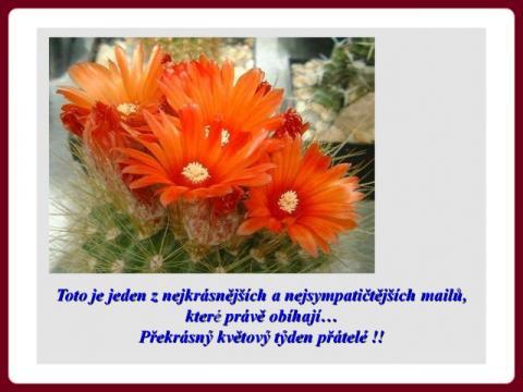 pekny_den_prani_s_hudbou