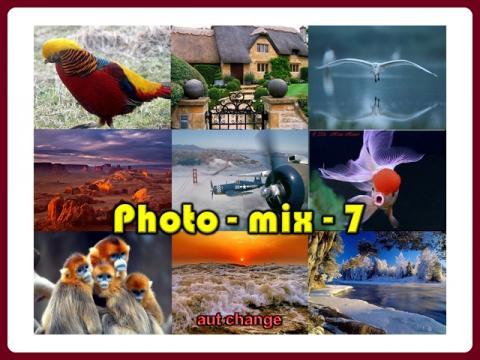 photo_mix_-_consul_7_-_music_-_marmalade