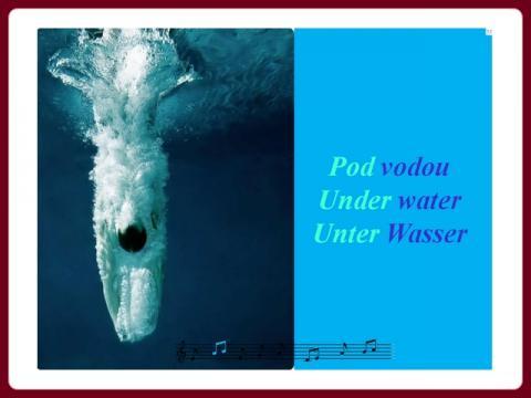 pod_vodou_m