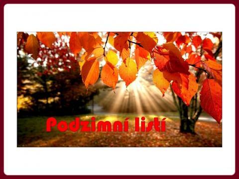 podzimni_listi_-_yveta