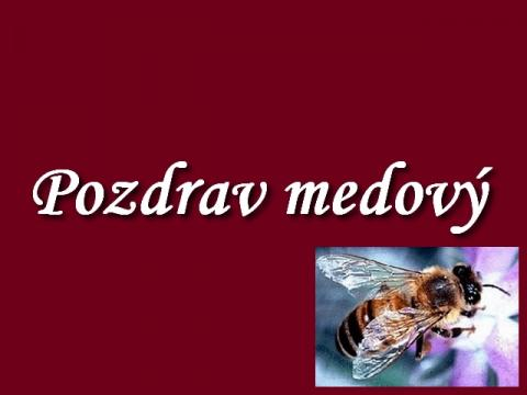 pozdrav_medovy