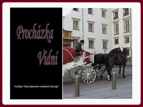 prochazka_vidni_cz
