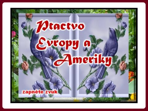 ptactvo_evropy_a_ameriky