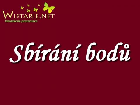sbirani_bodu_wistarie