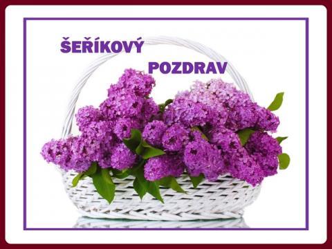 serikovy_pozdrav_-_yveta
