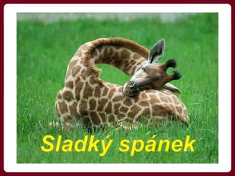 sladky_spanek_-_oh_la_belle_vie_-_mireille