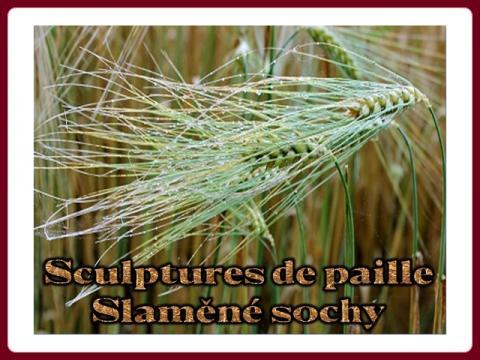 slamene_sochy_-_sculptures_de_paille
