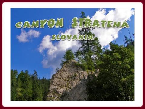 slovensko_-_tiesnava_stratena_-_steve