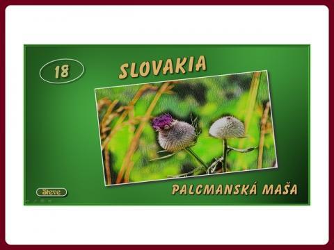 slovensko_palcmanska_masa_-_steve