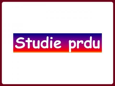 studie_prdu