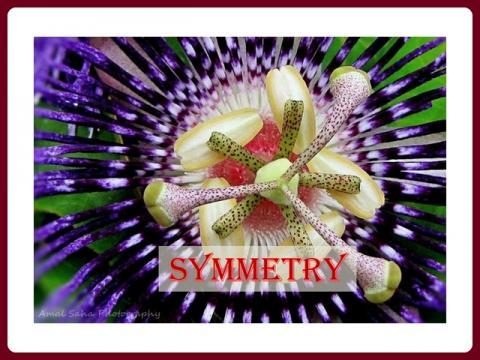 symetrie_-_vamos