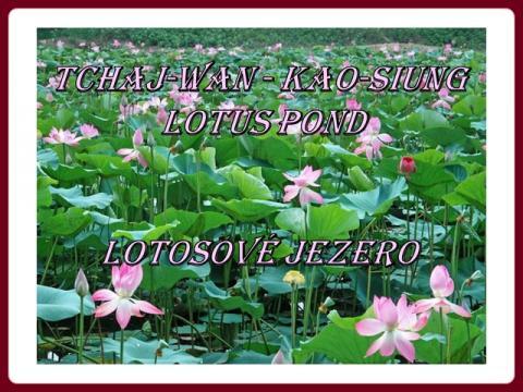tchaj-wan_-_lotosove_jezero