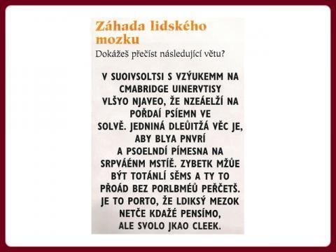 test_1_zahada_lidskeho_mozku_nahled