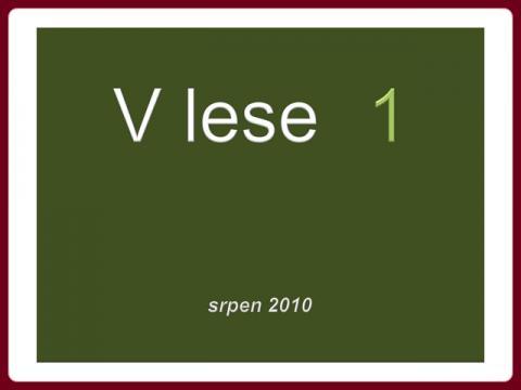 v_lese_1_-_srpen_2010