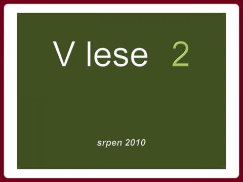v_lese_2_-_srpen_2010