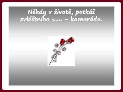 vecne_pratelstvi