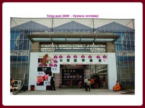 vystava_orchidei_tchaj-wan_2009