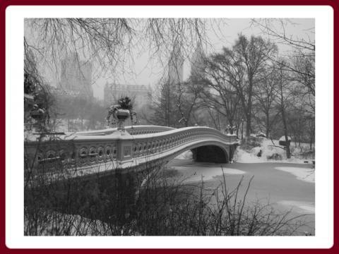 zasnezeny_central_park_-_snow_covered_central_park_-_olga_e