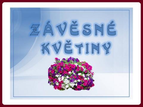 zavesne_kvetiny_-_yveta