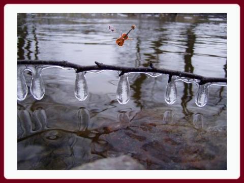 zimni_nalada_-_hiver_-_bp_herdier