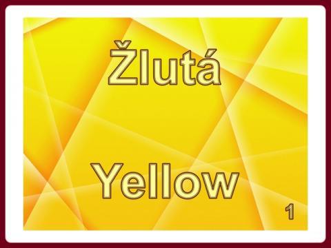 zluta_-_yellow_1_-_mct