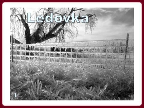 zmrzly_dest_-_ledovka_1