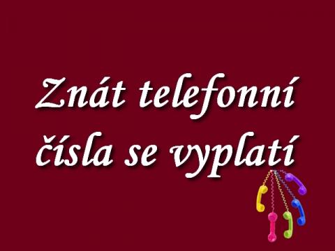 znat_telefonni_cisla_se_vyplati_-_cesko