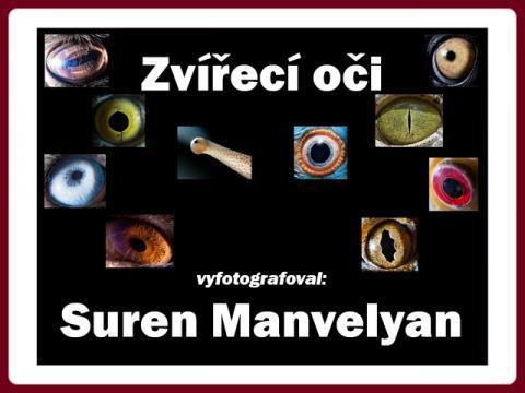 zvireci_oci_-_suren_manvelyan
